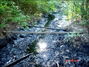Edwards Creek. Courtesy of EPA