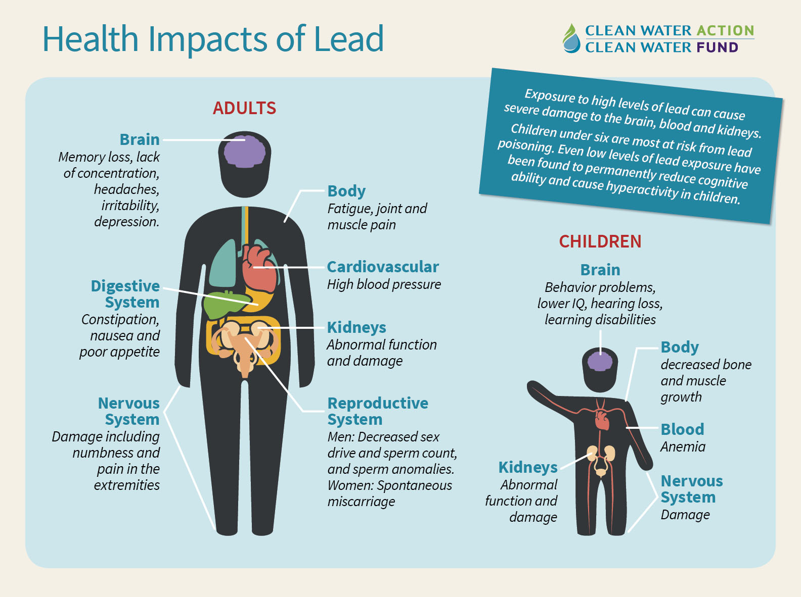 Health Impacts of Lead - graphic