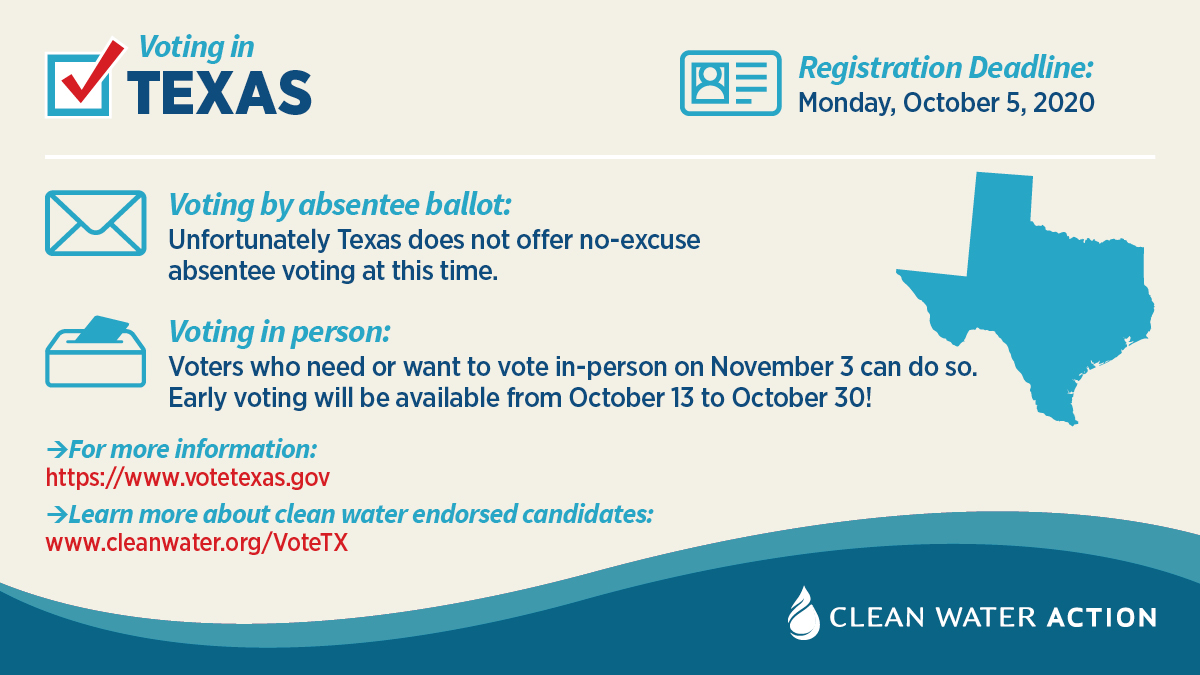 Texas voter information