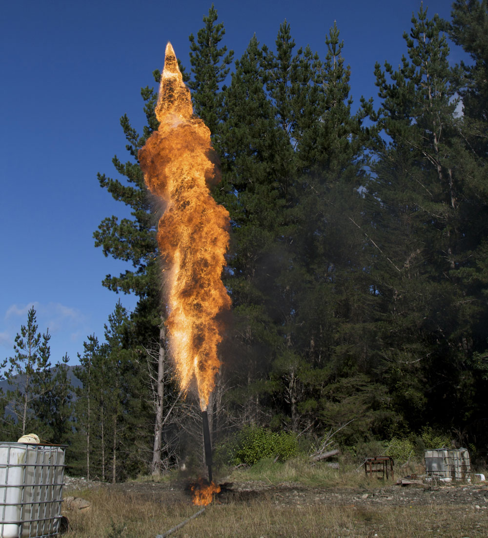 Gas flare near trees. Photo credit: Lakeview Images / Shutterstock