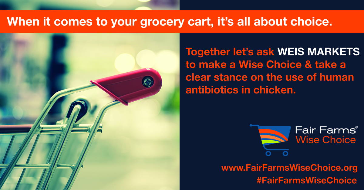 When it comes to your grocery cart, it's all about choice.