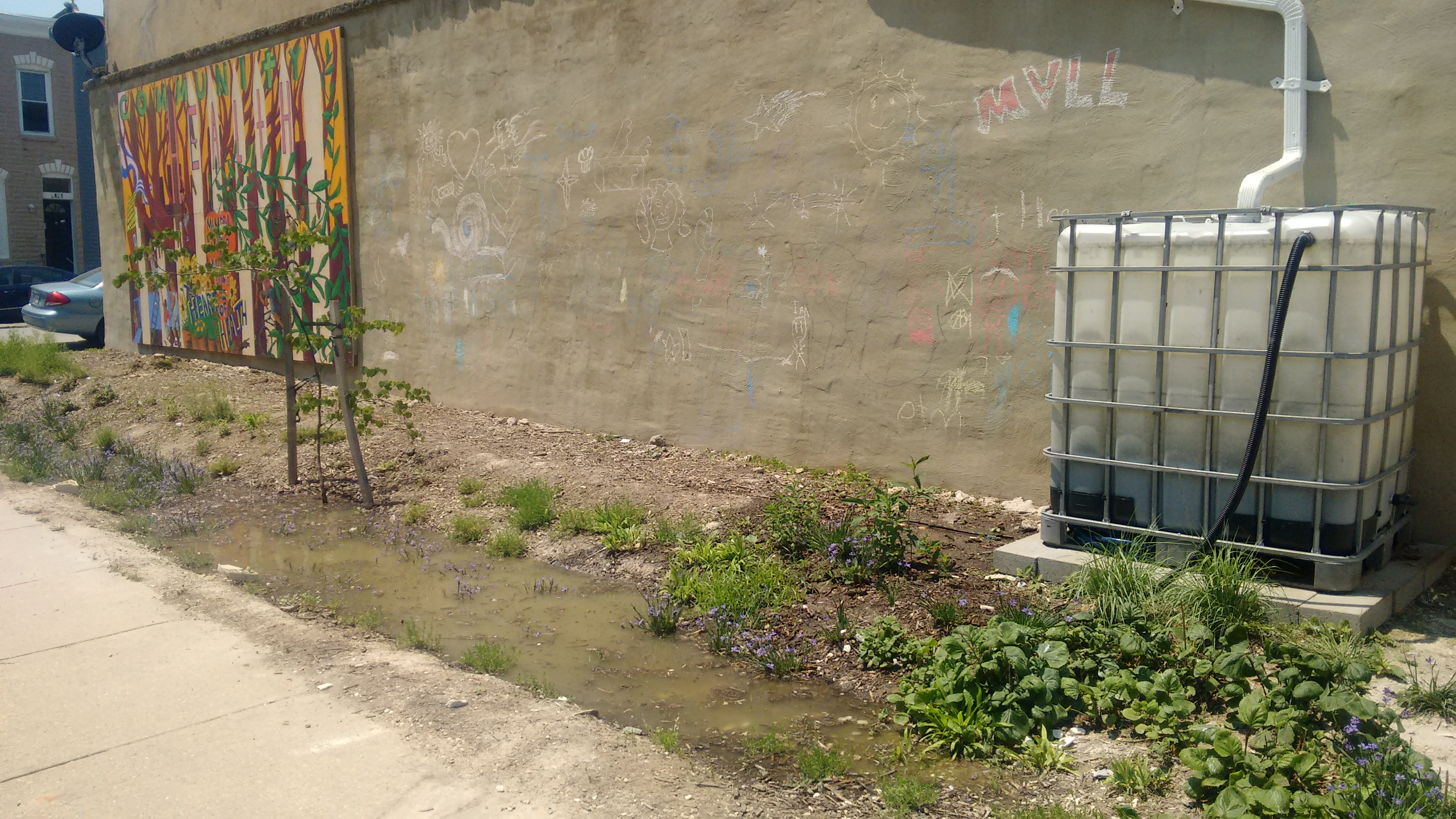 Baltimore's stormwater remediation fee could be funding green stormwater restoration projects like this rain garden in McElderry Park. Photo by Jennifer Kunze.