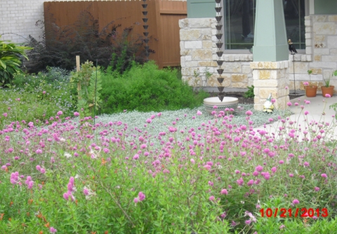 Xeriscape Styles For Texas Clean Water Action
