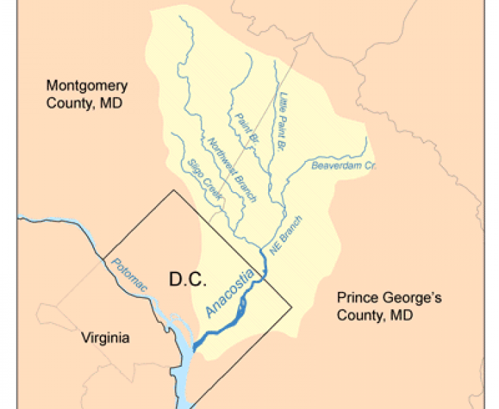 District of Columbia Clean Water Action