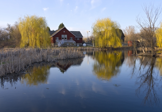 Farm with a pond, photo: istock, jferrer