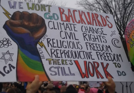 We won' go backward - protest photo (Women's March on DC Jan 2017). Credit Michael Kelly
