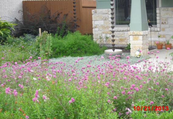 Xeriscape Cottage example #2