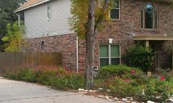 Xeriscape Cottage example #3